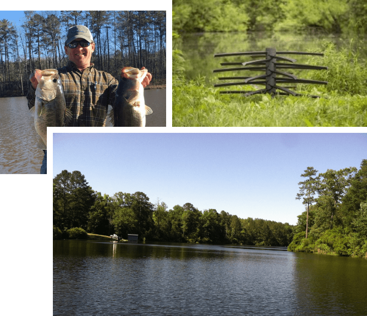 Pond Management Lake - Georgia Plantation Solutions